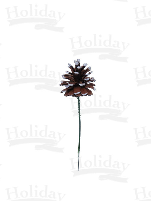 Single Pine Cone on Wired Pick, White-Tipped
