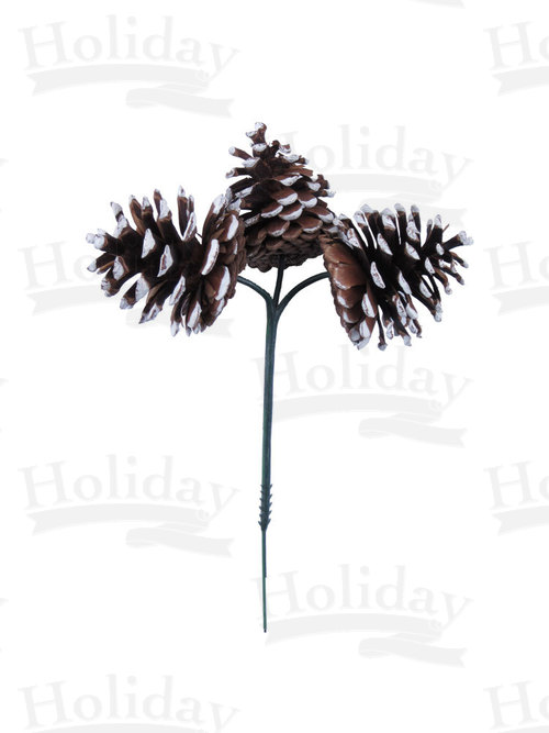 Three Pine Cones on Wired Pick, White-Tipped