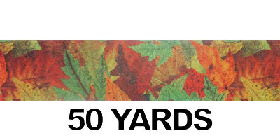#40 Poly Print Ribbon/FALL/50yds