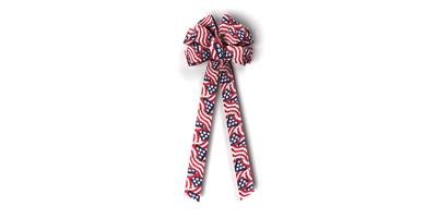 #40 Ten Loop Prints Bow/GLORY