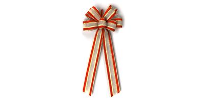 #40 Eight Loop Velvet Edge Bow/RED