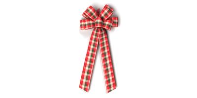 #40 Eight Loop Wired Country Plaid Bow/Pattern C